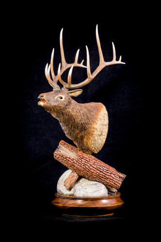 Bull Elk Bust 2 by Art by Andrew Purdy