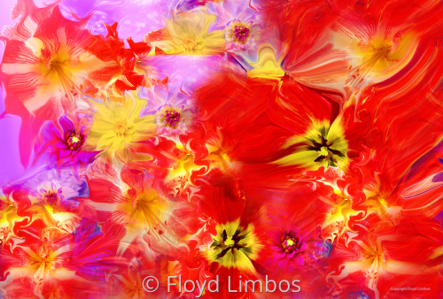 Abstract Flowers Red by Floyd Limbos