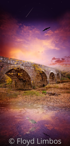The Bridge and The Heron