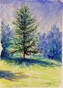 White Oak (thumbnail)