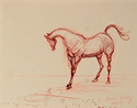 Sketch of Horse (thumbnail)