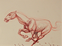 Sketch of Horse Running (thumbnail)