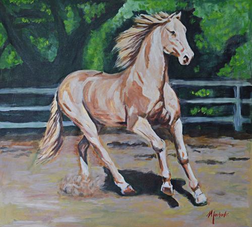 Golden Horse / Caballo Dorado