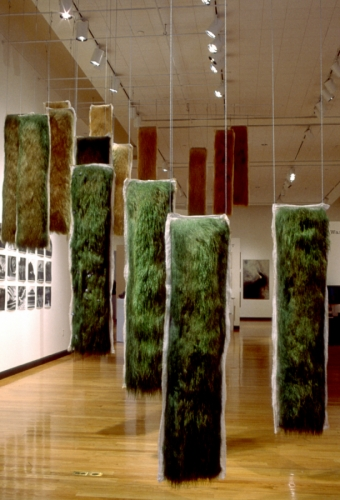 Installation of 17 live and dying grass panels, ceiling mounted, some with embedded photographs. Large-format gelatin silver prints on wall. 