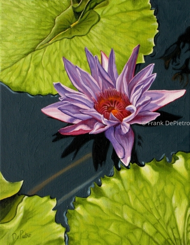 Water Lilies # 6