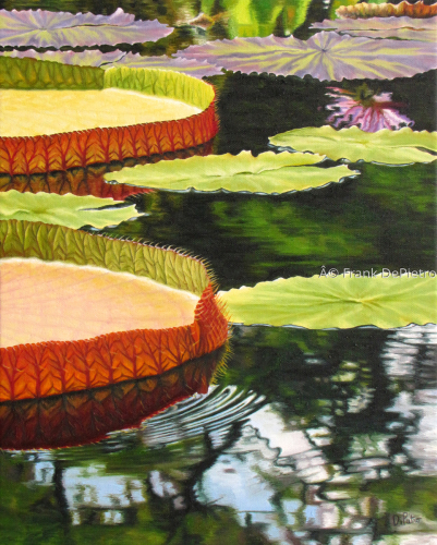Water Lilies # 9