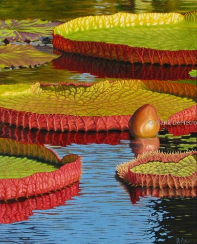 Water Lilies # 10