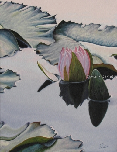 Water Lilies #15