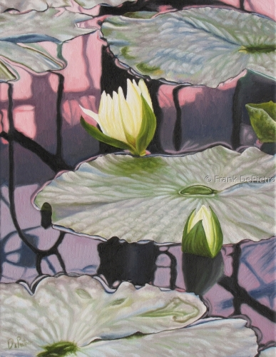 Water Lilies #16