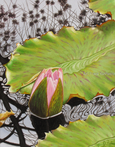 Water Lilies #23