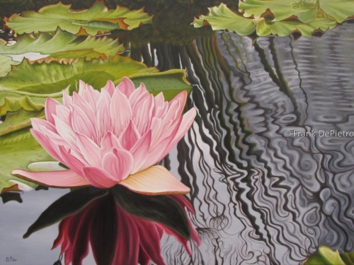Water Lilies # 32
