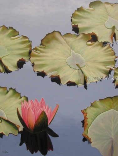 Water Lilies #35