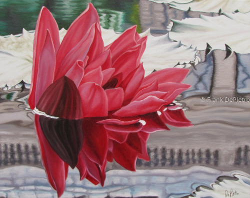 Water Lilies #37