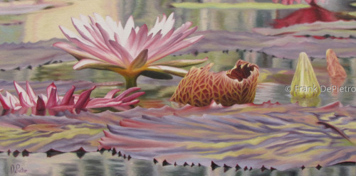 Water Lilies #38