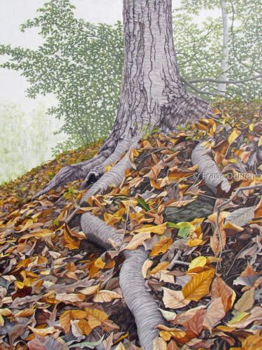 Tree Trunk with Fallen Leaves
