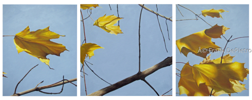Yellow Leaves by Frank DePietro Fine Art