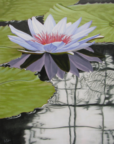 Water Lilies #42