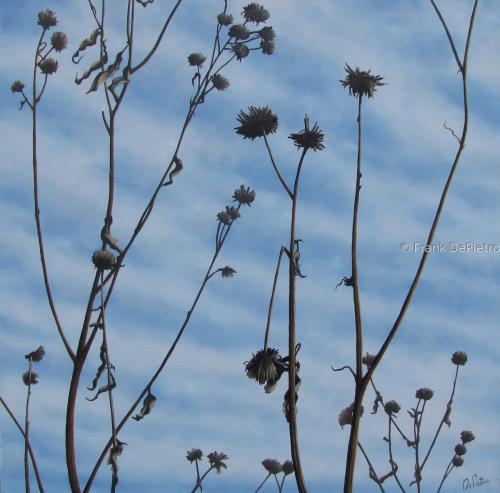 Winter Meadow 1