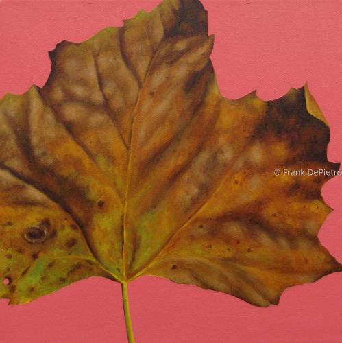 Leaf Study #2
