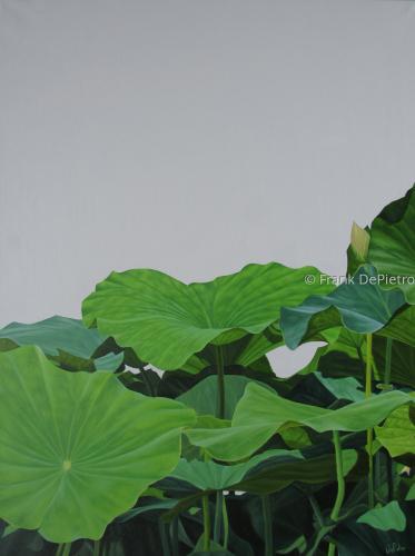 Lotus Number Twelve