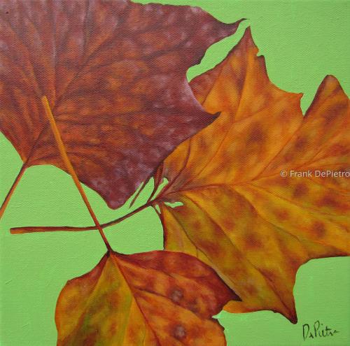 Leaf Study #6