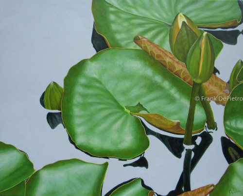 Water Lilies #45
