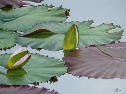 Water Lilies #48