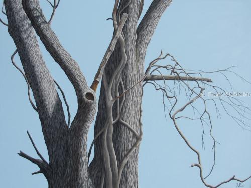 Entangled Tree