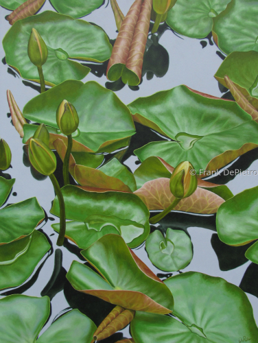 Water Lilies #52