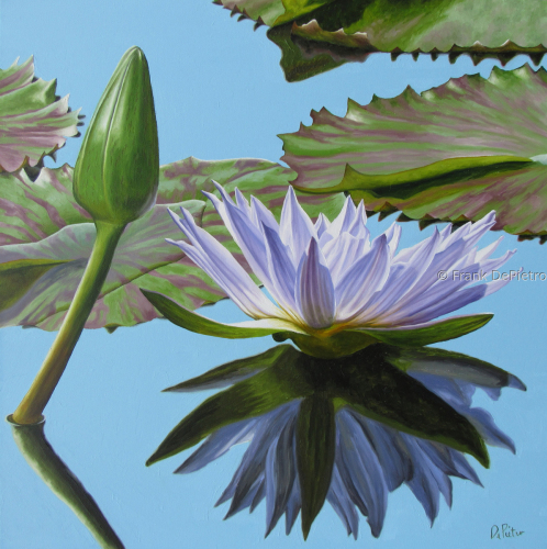 Water Lilies #51 by Frank DePietro