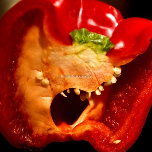 Sargent Pepper
