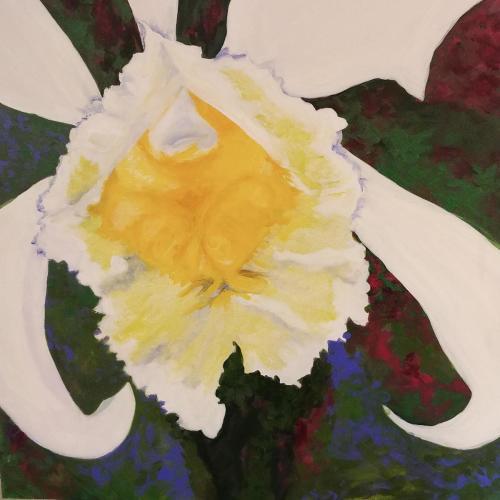 Orchid Three