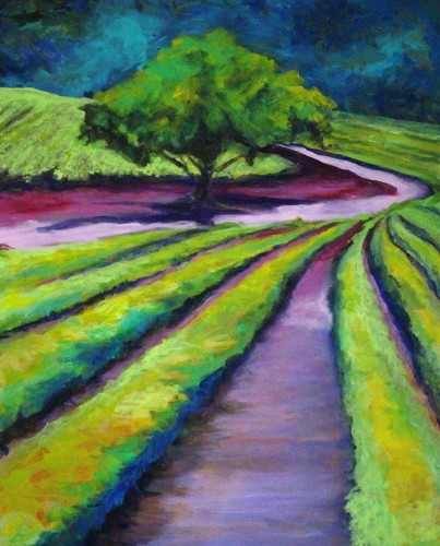 Stroll in the Vineyard