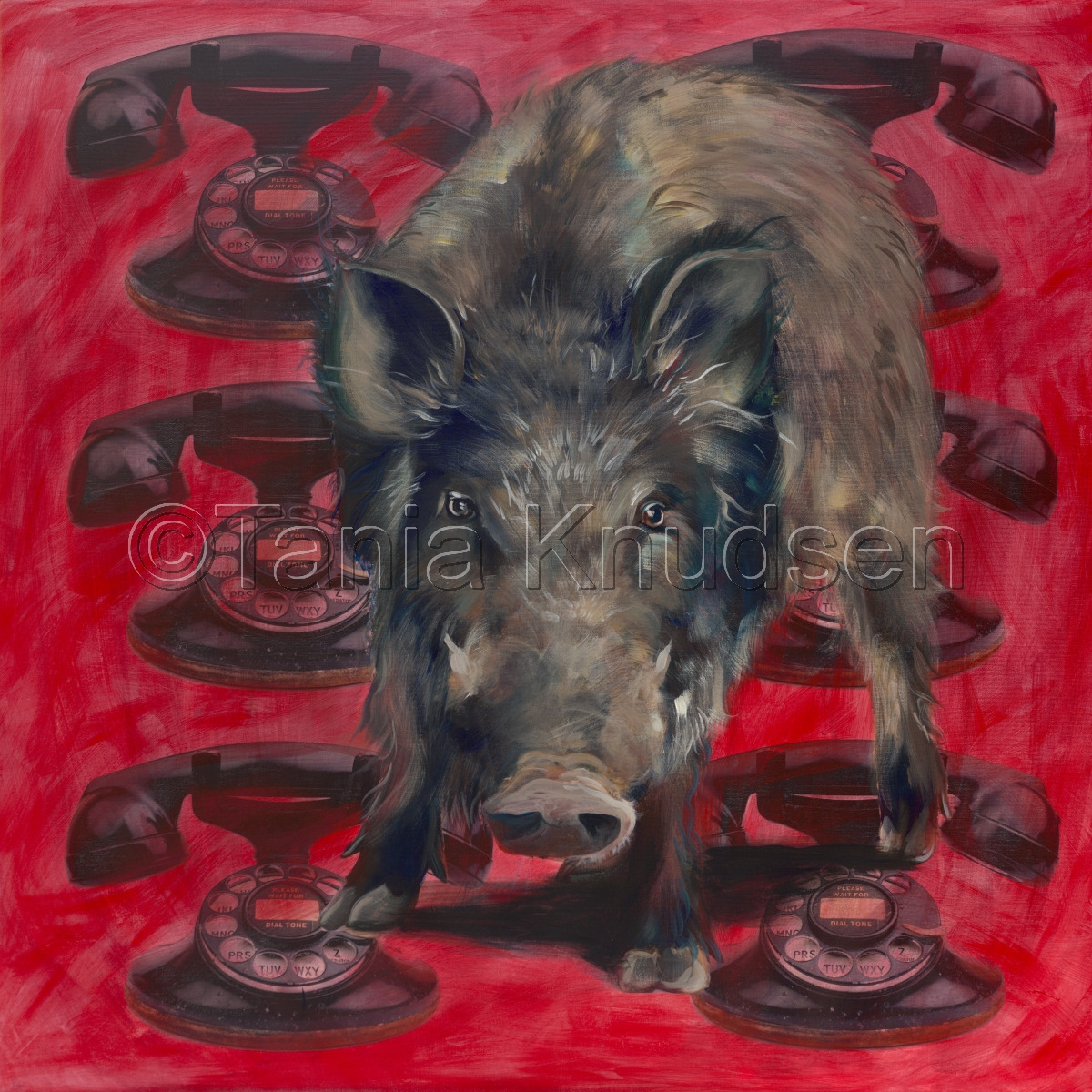 Arkansas Razorback painting (large view)