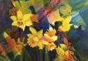 Daffodils (thumbnail)