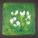 White Flowers with Green Background (thumbnail)