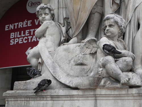 Cherubs and Pidgeons