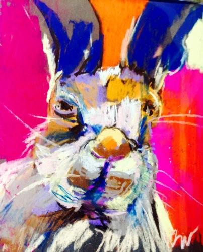 Rabbit sense