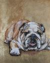 Bulldog 1 Original Oil Painting (thumbnail)