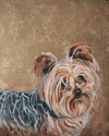 Yorkie Original oil Painting with Gold Leaf (thumbnail)