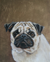 Pug 1 Original Oil Painting with Gold Leaf (thumbnail)