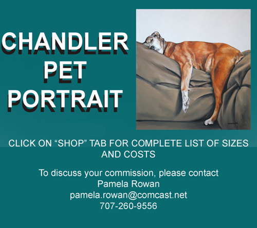 PET PORTRAIT INFO