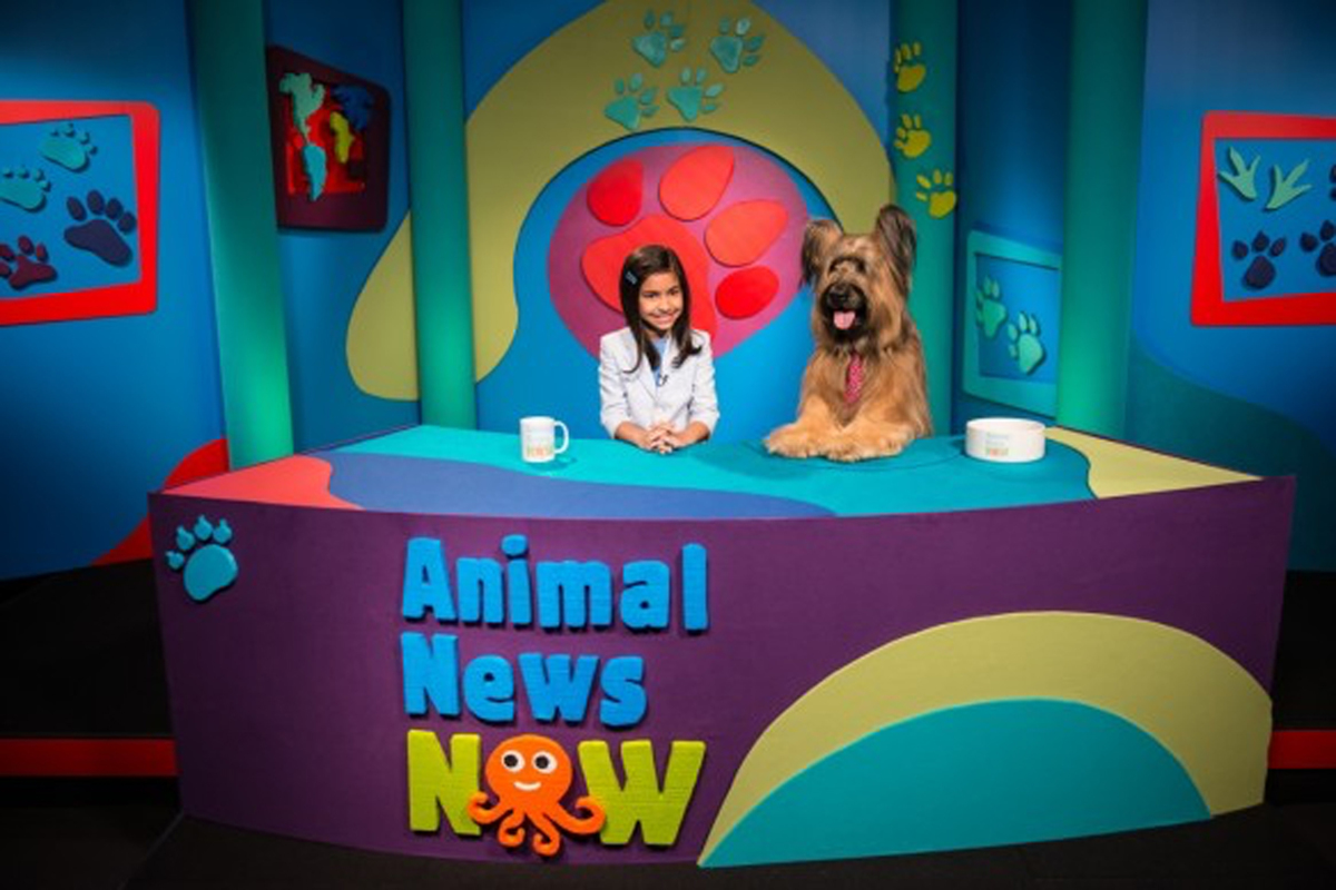 Animal News Now (large view)