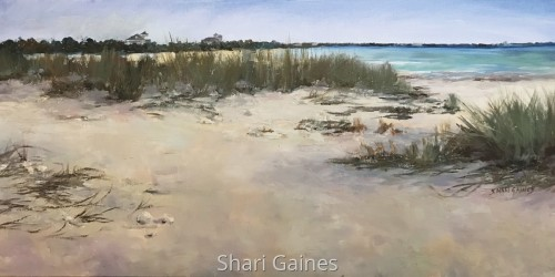 Summer Walk on Honeymoon Island