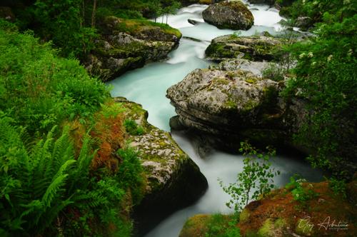 Norwegian Serenity