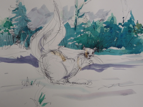 The Snow Squirrel