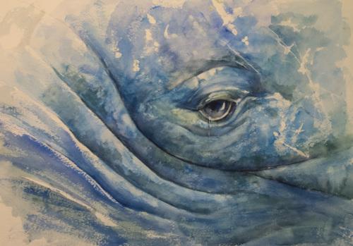 Sorrowful Whale