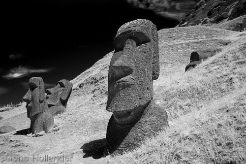 Moai at the Quarry I, Easter Island (large view)