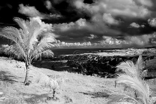 Landscape, Hanga Roa, Easter Island (large view)