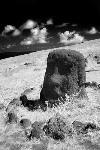 Moai, Orongo Village, Easter Island (large view)
